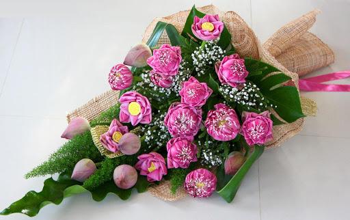 hoa sen sinh nhật