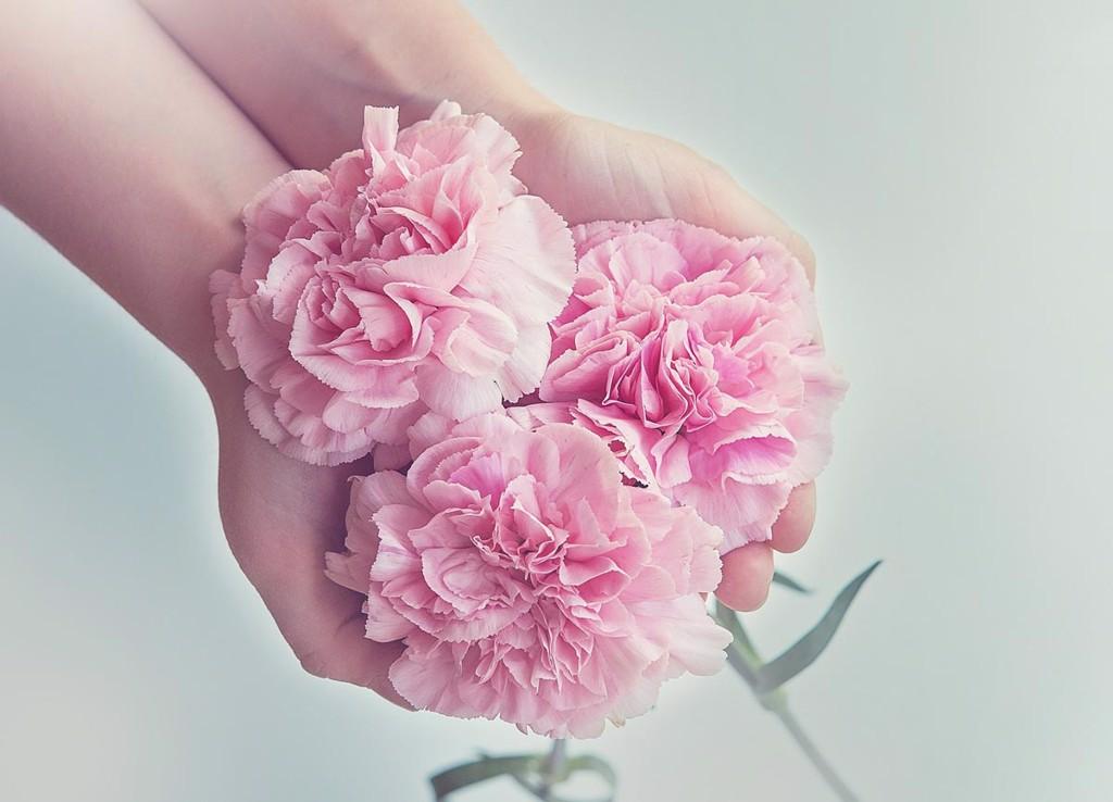 bông hoa tặng mẹ